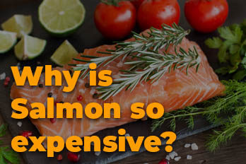 Why is salmon so expensive?