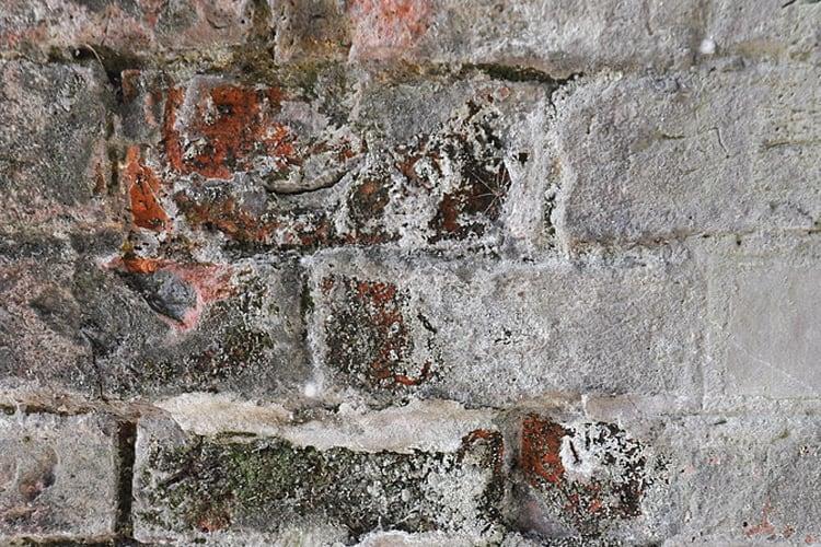 Salt on bricks, this is what alkali resistant primer stops